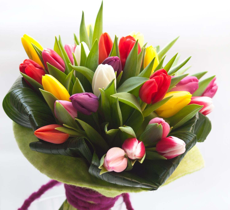 Costo Mazzo Di Fiori Yahoo.Bouquet Da 30 Tulipani Misti Oasi Dei Fiori